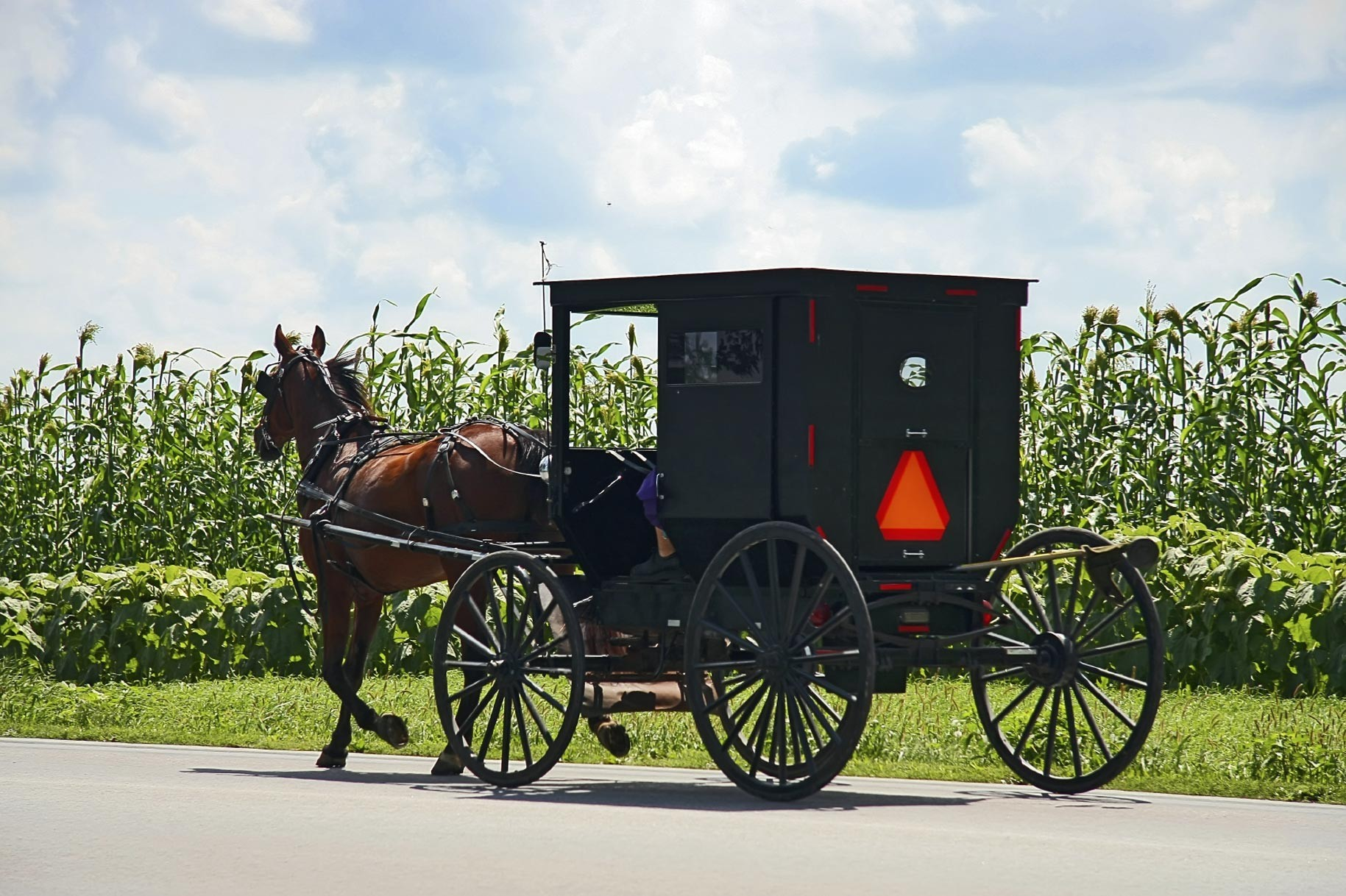 Learn the Amish-Mennonite Story at Menno-Hof