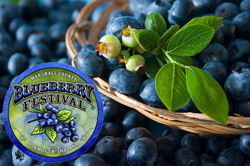 Marshall County Blueberry Festival 2016