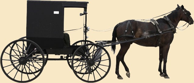 Amish Dinner and Buggy-ride at Scottish BB