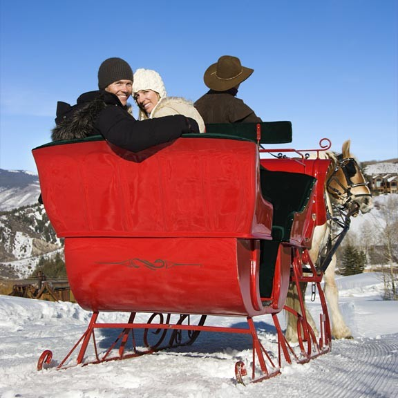 One Horse Open Sleigh Rides